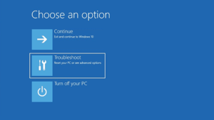 Windows Recovery Options Troubleshoot